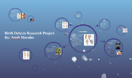 Birth Defects Research Project