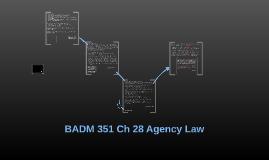 BADM 351 Ch 28 Agency Law