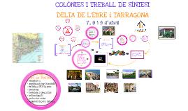 COLÒNIES DELTA DE L'EBRE 2014