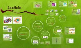 Copy of UCALP, Curso de ingreso, Biología; Unidad n°3: La célula
