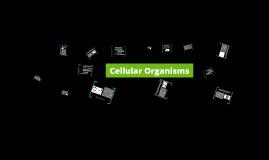 Cellular Organisms