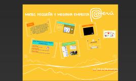 Semana 7: Micro, Pequeña y Mediana empresa.