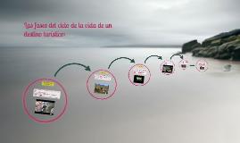Copy of Las fases del ciclo de la vida de un destino turístico: