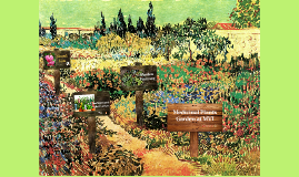 Medicinal Plants Garden at MVI