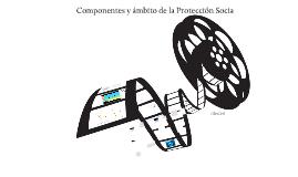 Componentes y ámbito de la Protección Social