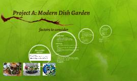 Project A: Modern Dish Garden