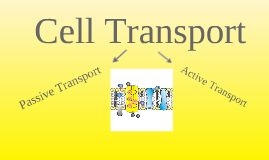 Copy of Cell Transport