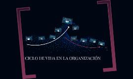 CICLO DE VIDA EN LA ORGANIZACIÓN