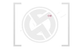 Copy of Présentation Entreprise ho5group