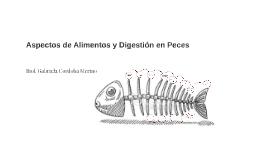Copy of Copy of Aspectos de Alimentos y Digestión en Peces