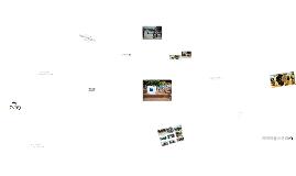 Copy of 물나무사진학교안내프레지