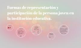 Formas de representacion y participacion de la persona joven