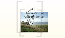 Causes and Effects of the Declaration of Independence