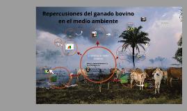 Repercusiones del ganado bovino al ambiente