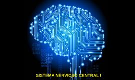 Sistema Nervioso Central I (Cerebelo y Otras células del sistema)