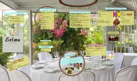 "Plan de Marketing ""Restaurante Selma Junior"" Definitivo"