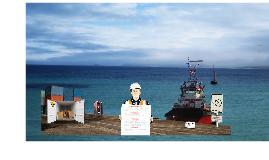 Brochure 2013 - Porto Mx Comercializadora