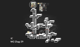WC Chap 29