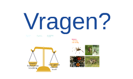 http://www.spiders.us/files/eratigena-agrestis-1.jpg
