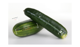 Behavior Driven Development with Cucumber