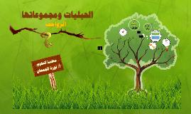 suzan al3baid + noura aljm3an