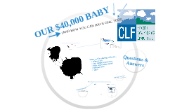 Copy of Our $40,000 Baby & How You Can Have One, Too!