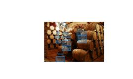 proceso de vinificación