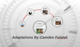 Adaptations By:Camden Falatek