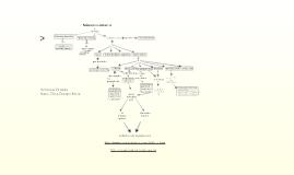 mapa conceptual numeros enteros -Beatriz Elena Ocampo Rivera