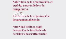 Naturaleza de la organización, el espíritu emprendedor y la