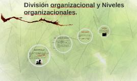Copy of División organizacional y Niveles organizacionales.