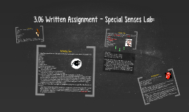 3.06 Written Assignment - Special Senses Lab: