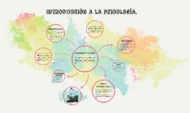 Trastornos del sueño (Sonambulismo).
