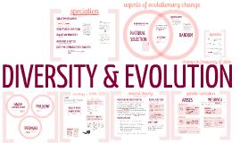 Diversity & Evolution