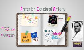 Copy of Copy of Anterior Cerebral Artery Anatomy