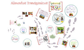 Copy of Alimentos Transgenicos