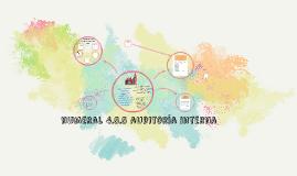 numeral 4.5.5 auditoría interna