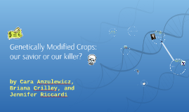 Genetically Modified Crops: