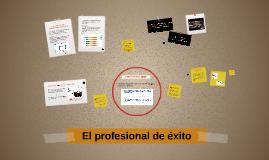El profesional de éxito