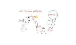 Week 7: Editing and Revising Skills