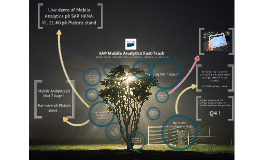 SAP Innovation Forum 2013