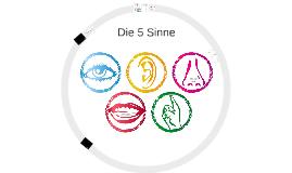 Die 5 Sinne