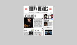 Copy of SHAWN MENDES