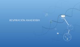 Copy of RESPIRACIÓN ANAEROBIA