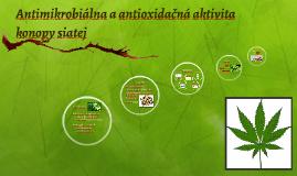 Antimikrobiálna a antioxdačná aktivita konopy siatej