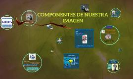 Copy of COMPONENTES DE NUESTRA IMAGEN