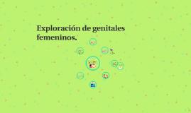 Exploración de genitales femeninos.