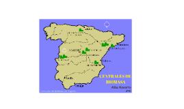 CENTRALES DE BIOMASA