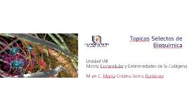 Copy of Tópicos Selectos de Bioquímica