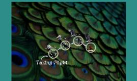 Bird Presentation: Taking Flight